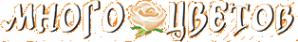 Логотип компании Много цветов