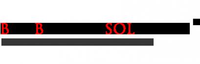 Логотип компании Big Bisness Solution