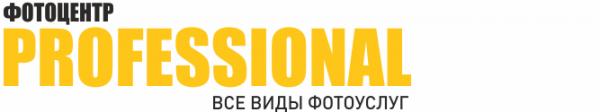 Логотип компании Professional